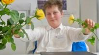 Schüler experimentieren 2017: Bei Marc Dobrzanski bleiben die Rosen länger frisch!