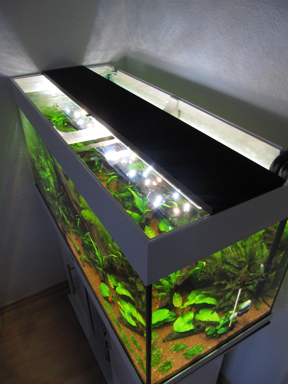 Aquarium Led Beleuchtung Selber Bauen Schullebernd S Technikwelt