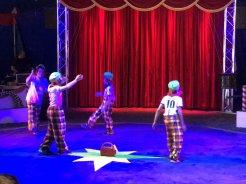 Zirkus-Gala_Gruppe 1 06.07 (8)