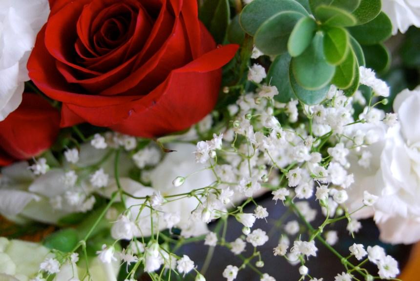 V-day_flowers_(2)
