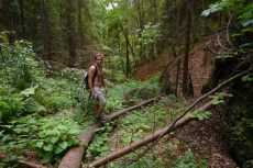 Pustili sme sa cestou necestou do pralesa