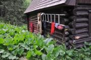 Chatka v Tichej doline