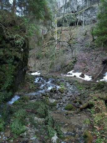 Jazierková jaskyňa