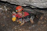 Falko pomáhal v jaskyni kopať