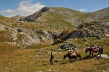 Koníky s jaskyniarskym materiálom pri Slovačke jame