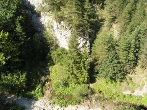 Pohľad z hora na Vyvieračku v Prosieckej doline - 29.8.2004
