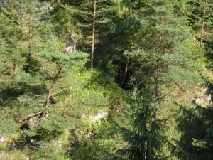 Vchod do jaskyne Blatnačka - 29.8.2004.