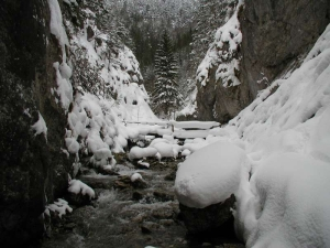 Prosiecka dolina 14.2.2004