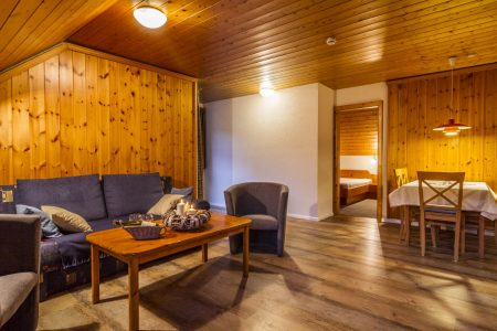 Wohnraum mit Schlafcouch und Essecke
