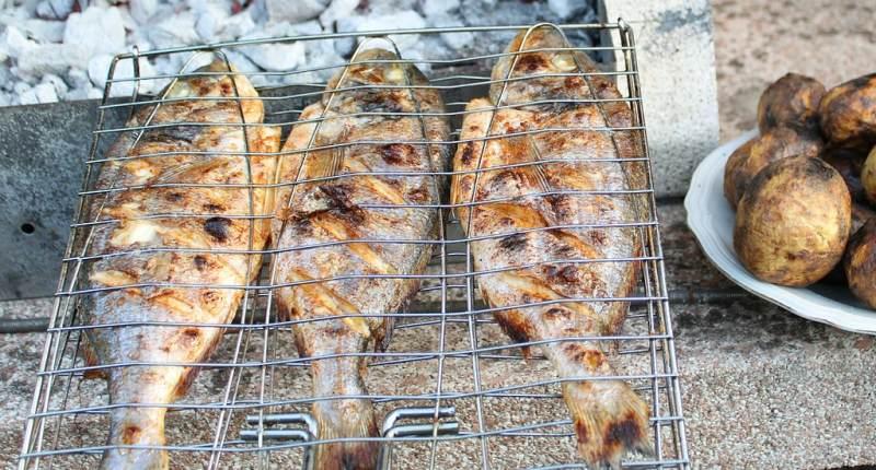 Fischgrillzange