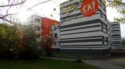 Schwerin: Volkshochschule wieder mit breitem Angebot