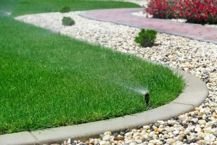 Smart Garden: Automatische Bewässerungslösungen sind auf dem Vormarsch