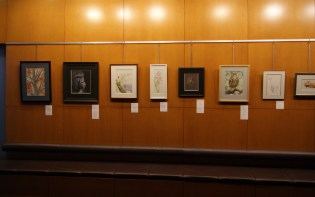 """The winning entry, Lori Dunn's """"Watching You"""", is second from left."""