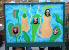 "SONSI members as carnivorous plants in a not-so-scientific ""illustration."""