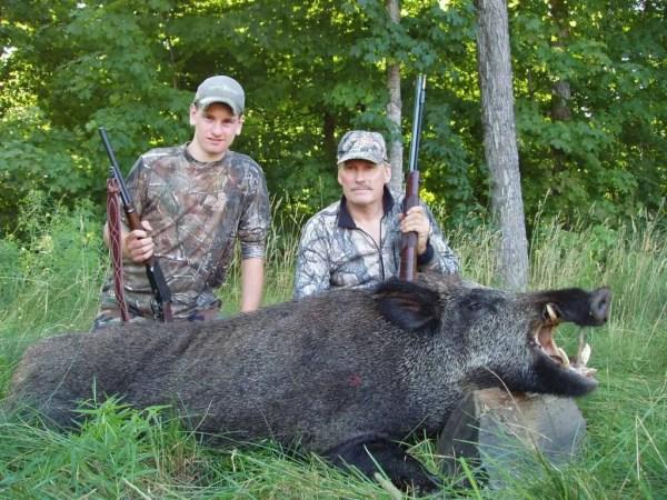 Russian Boars