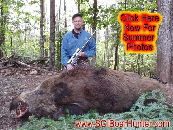 "Authentic Boar Hunting & ""Red Fin"" Lake Trout Fishing"