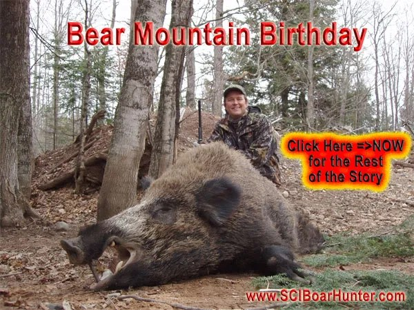 Hunt Giant Boar in the Great Northern Forest – USA