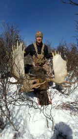 2016_moose-tag_winner
