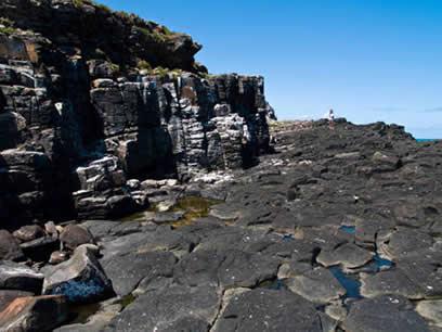 Abrolhos trap rock