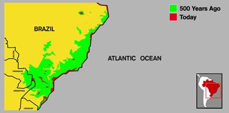 Region of the Atlantic Rainforest