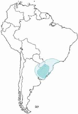 Campos Map