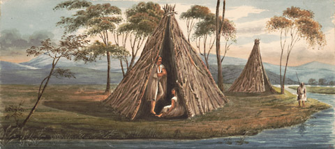 Fuegian wigwams by Earle