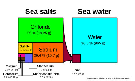 Breakdown of the composition of seawater