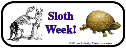 Sloth Week logo