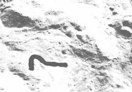 NASA - Foto Nr. AS16-120-19229. Ungewöhnliche Form in der Nähe des Königskraters.