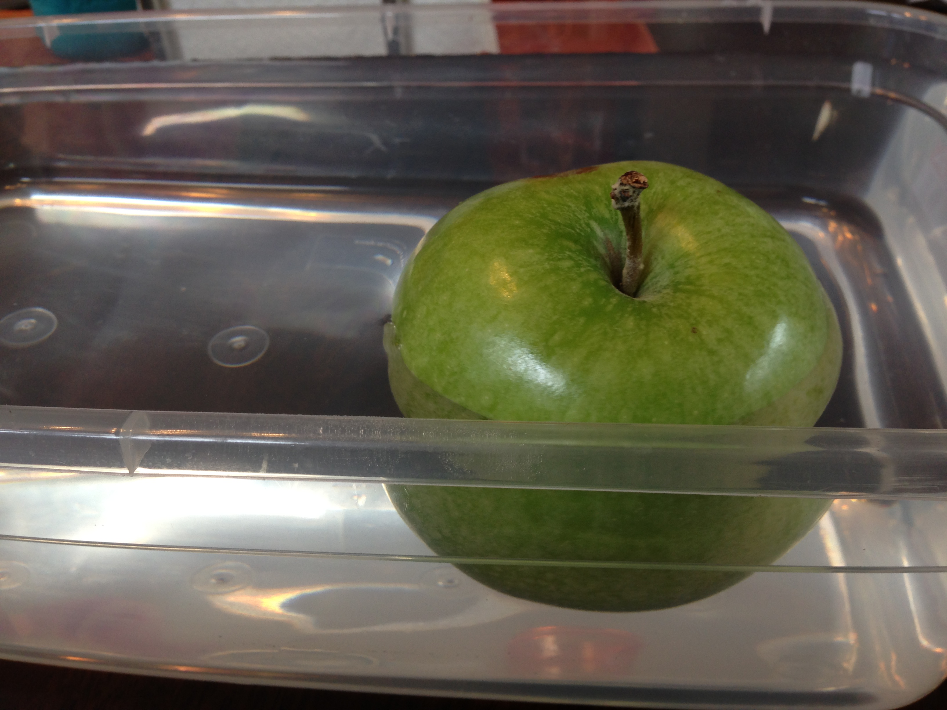 Apple Float Or Sink