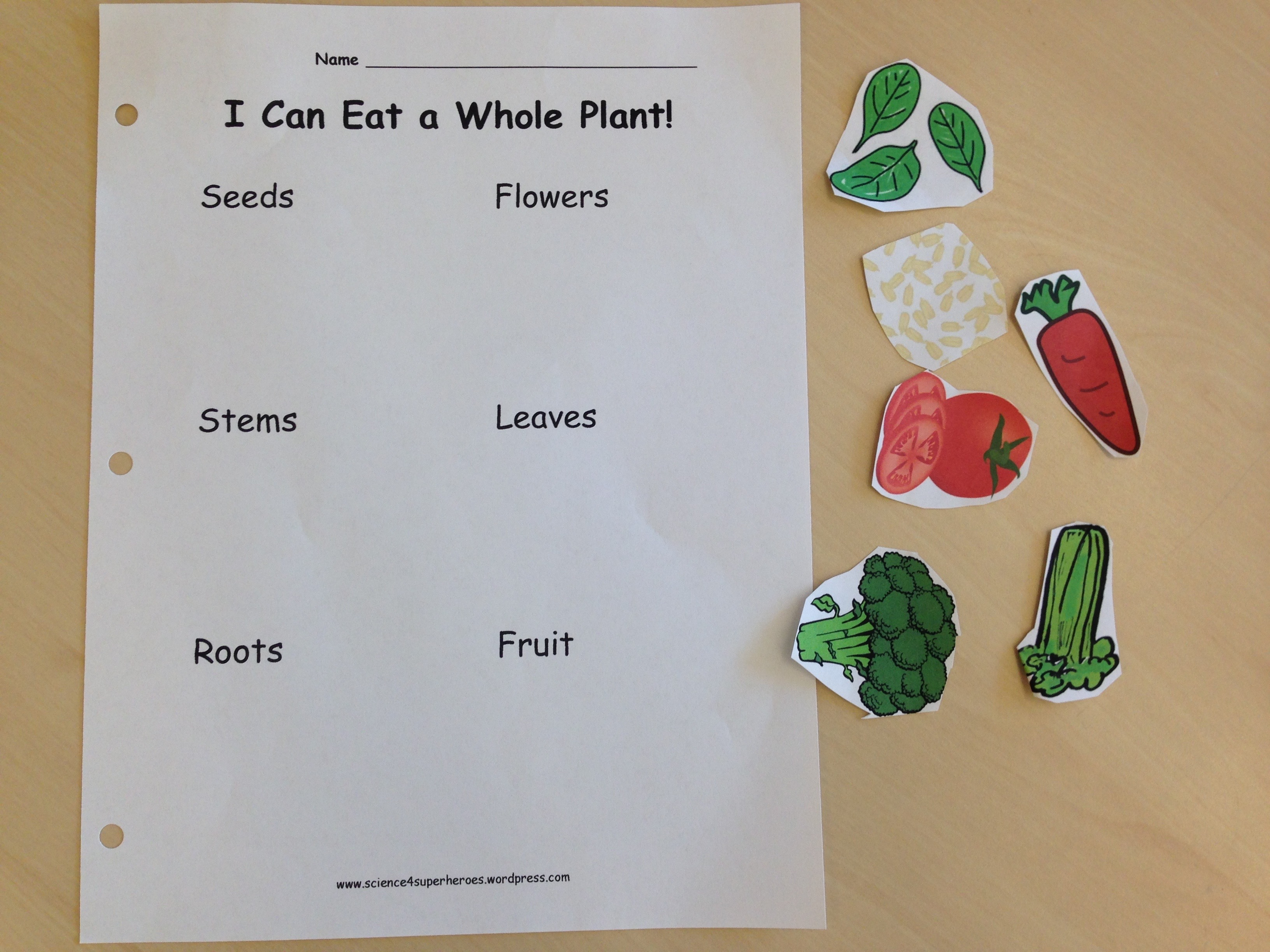 Eating Parts Of A Plant