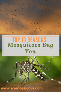 Top 10 Reasons Mosquitoes Bug You-http://sciencealcove.com/2014/07/make-non-toxic-mosquito-trap/