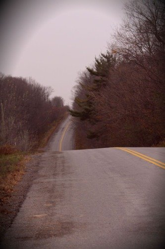 The road to my home in Millbrook, Ontario, copyright 2014, Teresa Coppens