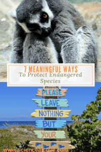 7 Meaningful Ways to Protect Endangered Species - http://sciencealcove.com/2015/07/seven-meaningful-ways-to-protect-endangered-species/
