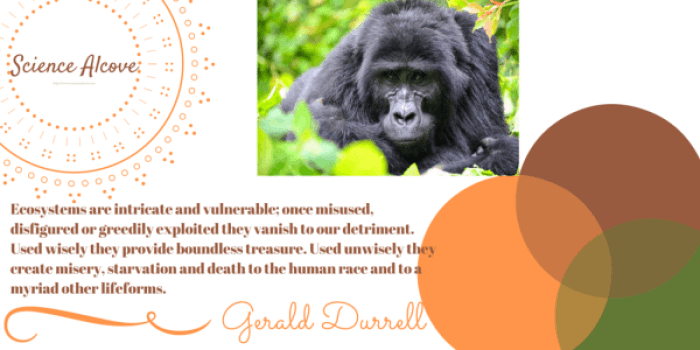 Gerarld Durrell importance of ecosystem quote