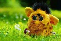 https://pixabay.com/en/furby-funny-soft-toy-toys-children-783693/