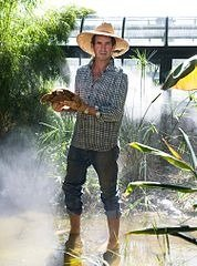 Eric Goode and Tortoises