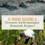 12 Unique Reasons a Forensic Anthropologist Demands Respect