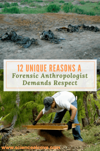 12 Unique Reasons a Forensic Anthropologist Demands Respect-http://sciencealcove.com/2016/04/12-unique-reasons-forensic-anthropologist-demands-respect/