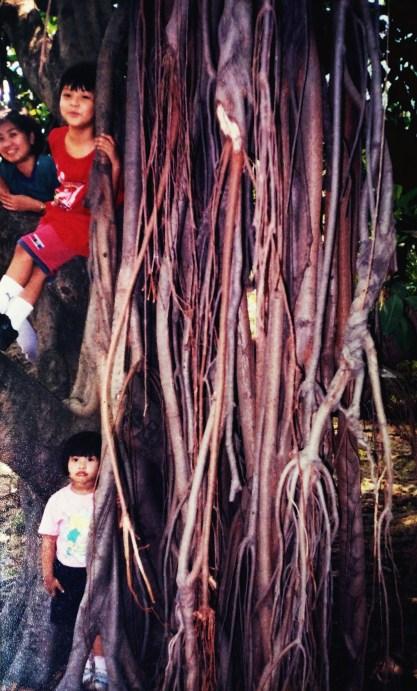 At the Ninoy Aquino Wildlife Park
