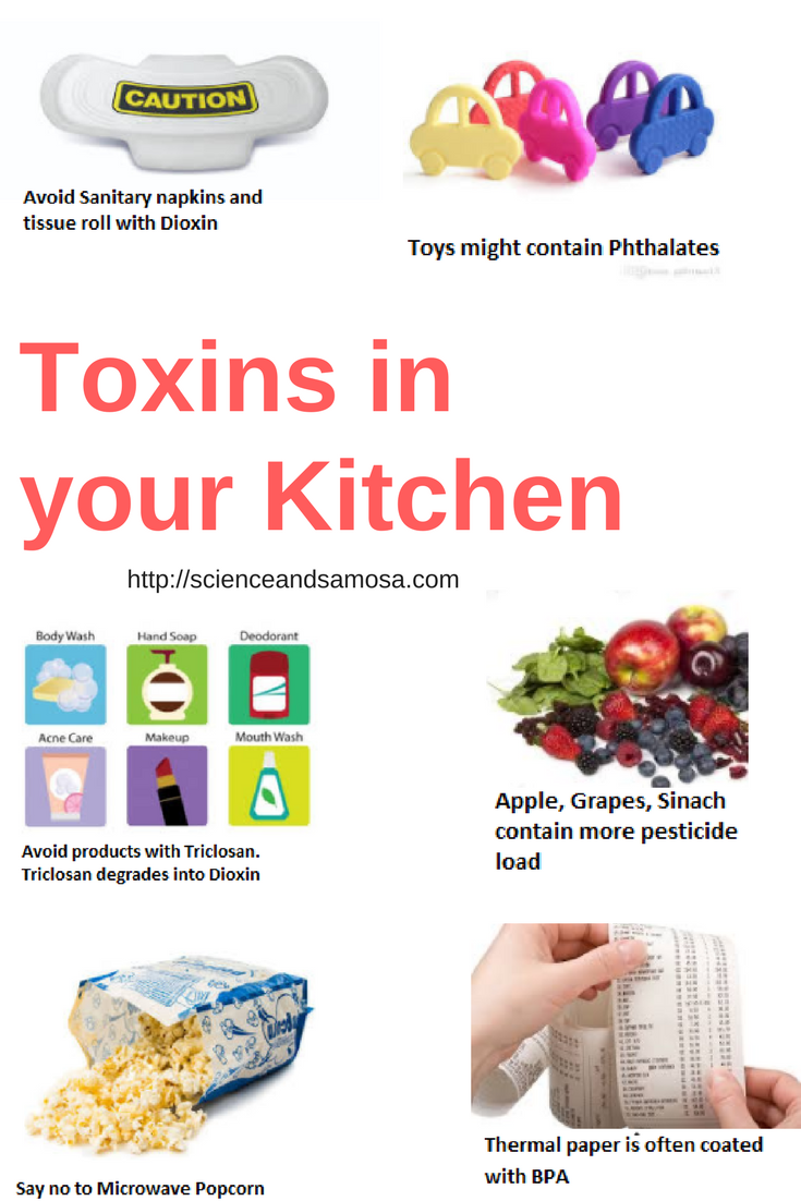 Toxins in Kitchen