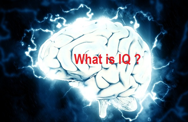 What is IQ