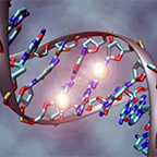 Genetics and Human Identity
