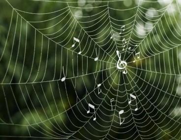 Spider silk demonstrates Spider Man-like abilities
