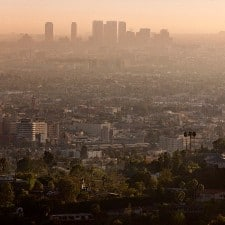 Study links air pollution to children's low GPAs