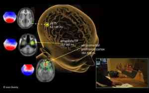 Moral evaluations of harm are instant and emotional, brain study shows
