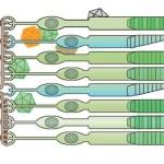 virusinphotoreceptors410