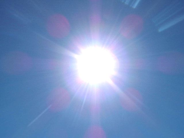 Biotech breakthrough: Sunlight can be used to produce chemicals and energy