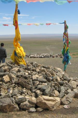 Mongolian Steppe becoming a desert thanks to overgrazing