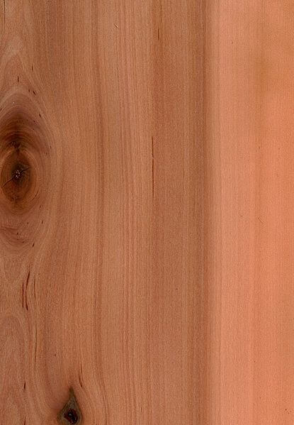 Bad luck? Knocking on wood can undo jinx